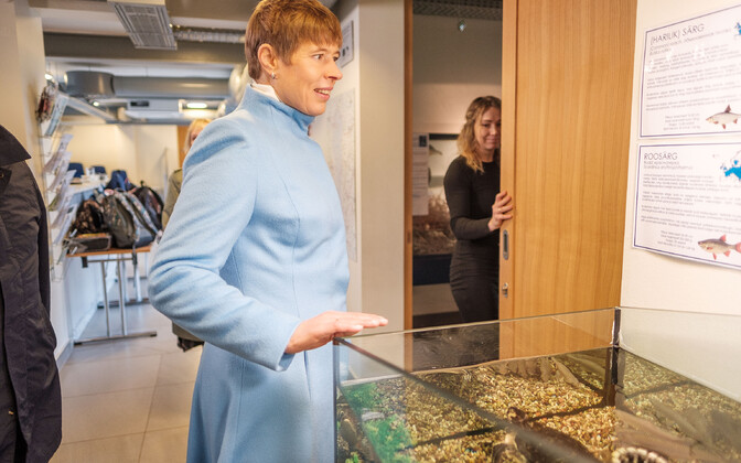 Президент Керсти Кальюлайд  чувствует себя хорошо.