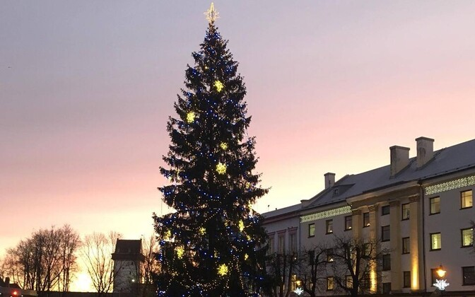Narva linnavalitsuse ette on kerkinud jõulukuusk.