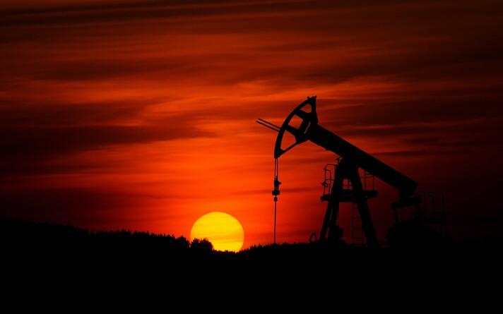 Naftaga seotud tulude vähenemise probleem ei jäta puutumata ka demokraatlikke riike.