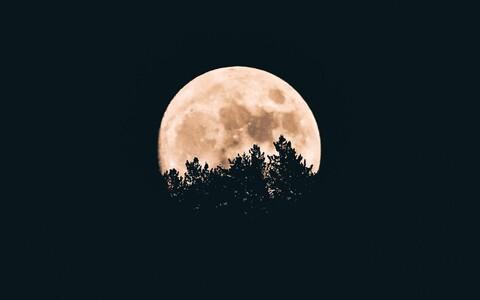 Lisaks meile hästi teada Kuule, on Maal aeg-ajalt teisigi kaaslaseid.