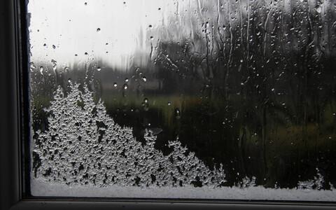 В пятницу во многих местах пройдет мокрый снег и дождь.
