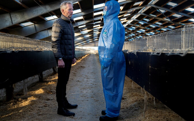 Peaminister Mette Frederiksen (kaitseülikonnas) ja naaritsaaretaja Peter Hindbo Koldingi lähedal tühjas naaritsafarmis.