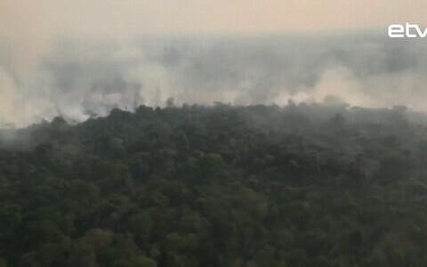 Вырубка лесов Амазонии в Бразилии.
