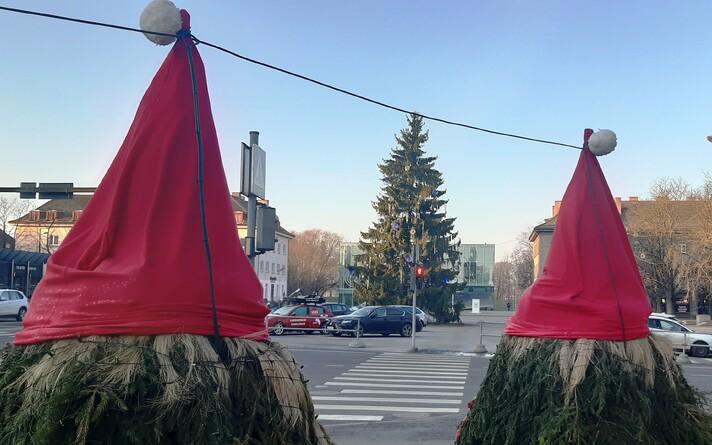 Still politically undefined Christmas trees in Pärnu.