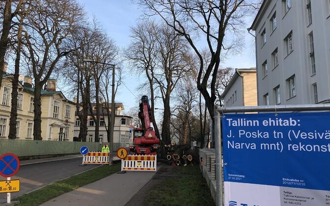 Puude maha võtmine remondi ootel Poska tänaval