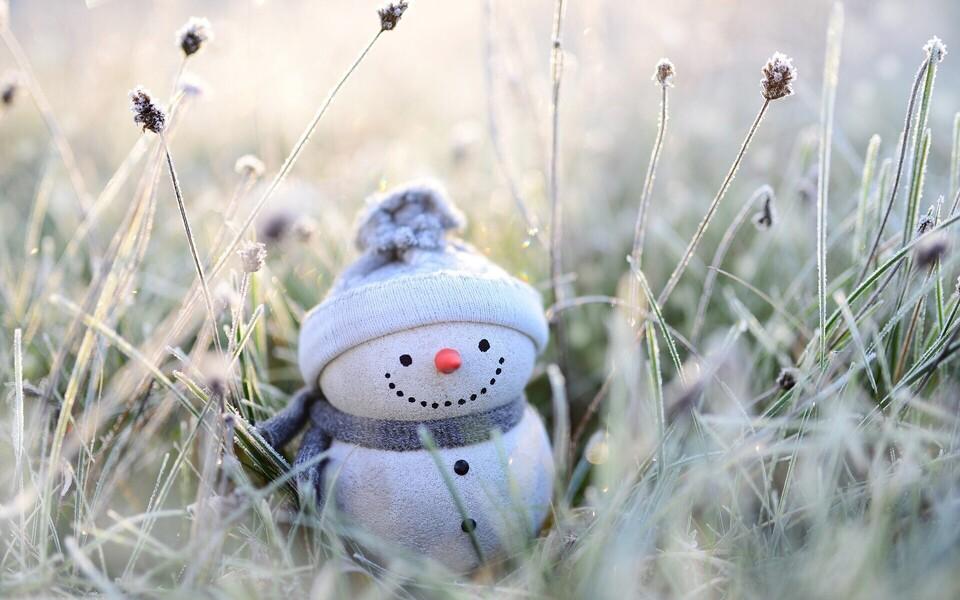 В пятницу местами пройдет снег и мокрый снег.