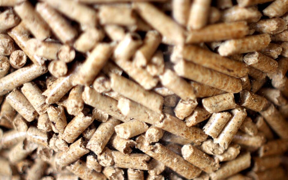 Eriti suur vastuseis on Ameerika Ühendriikides tekkinud puidugraanuli- ehk pelletitööstusele, mis üleilmse nõudluse tõttu üha laieneb.