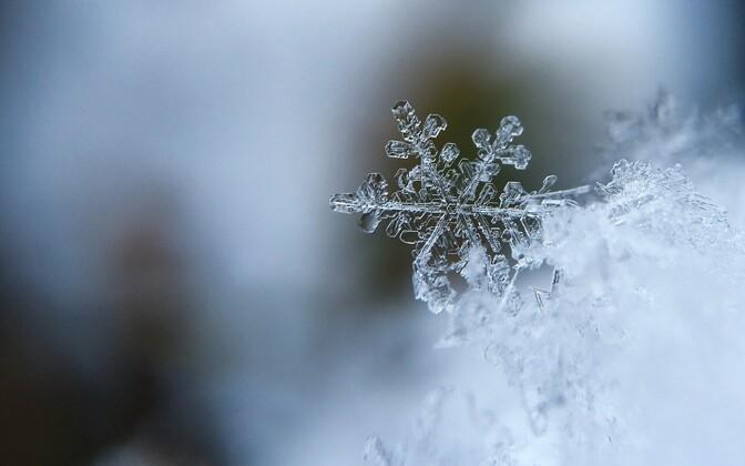 В пятницу во многих местах ожидается снег.