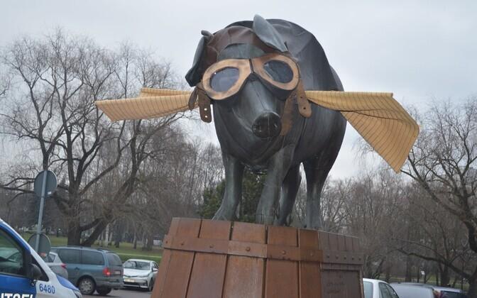 Новогодний костюм для скульптуры свиньи перед Тартуским рынком в 2019 году.