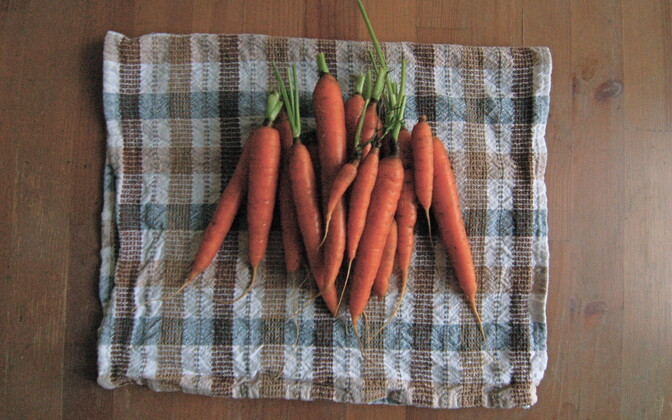 Maheporgandid tegi väärtuslikumaks seegi, et erinevalt tavaporganditest ei leitud neist taimemürgijääke.