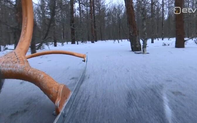 Весной Соомаа восхищает своим половодьем, а в мороз – возможностью покататься на коньках и санках посреди леса.