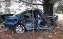 Pärnumaal toimunud avarii, milles hukkus vastu puud sõitnud auto juht.