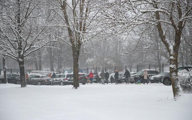Снежный Таллинн.