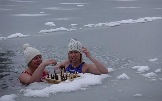 """""""Jääkuningannade male""""."""