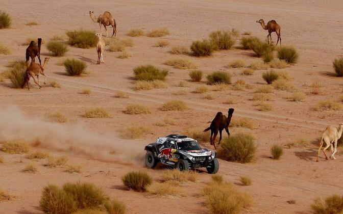 Stephane Peterhansel Dakari ralli kümnendal kiiruskatsel