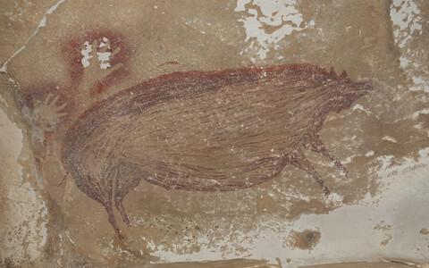 Leang Tedongnge koopa vanimaks dateeritud seamaaling.