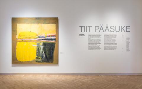 """Tiit Pääsukese ülevaatenäitus """"Nostalgiata"""" Tartu kunstimuuseumis"""