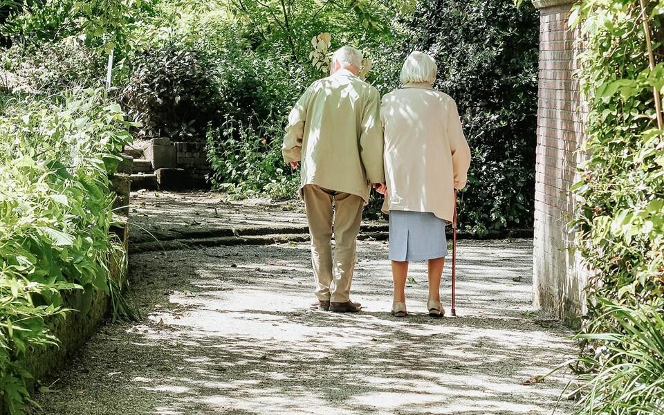 Herpesviiruse abil saab eakate immuuntervist hinnata.