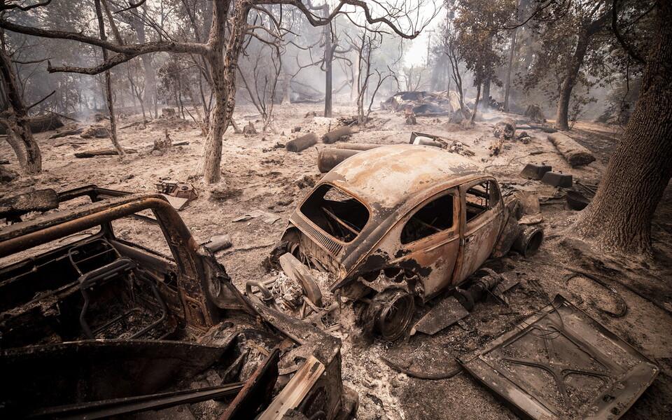 Californiat on räsinud viimastel aastatel mitmed metsatulekahjud.