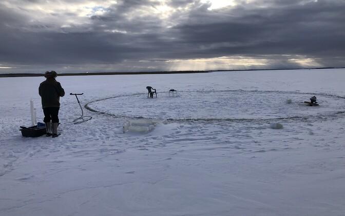 Läänemaal Matsalu lahe ääres Haeskas asuva Tuulingu talu peremees Ants Ale tegi kodu lähedale merejääst karusselli