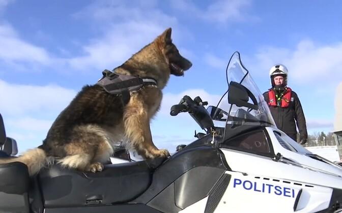 Talvel on mootorsaan mereäärsetele politseijaoskondadele asendamatu abivahend