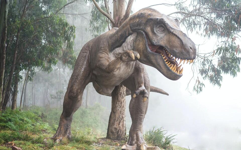 Dinosaurusi peetakse tavaliselt üsna soojalembesteks loomadeks.