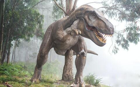 Dinosauruste väljasuremise põhjustas Maa kokkupõrge asteroidiga.