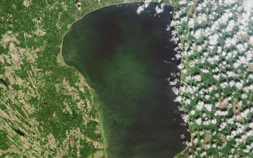 Teadlased leidsid, et tuulte tugevuse muutus mõjutas järsult Võrtsjärve fütoplanktoni arvukust.