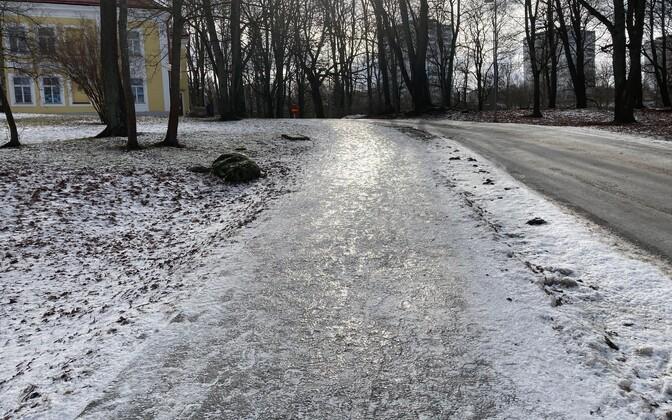 Libedad kõnniteed Tallinnas.