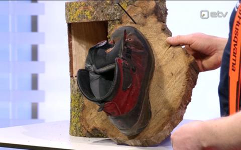 Arborist Heiki Hanso demonstreeris stuudios, et ka kruviga puuplaadile kinnitatud vana saabas sobib improviseeritud linnupesaks.