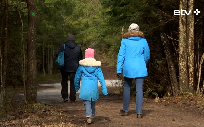 Прогулки по лесу.