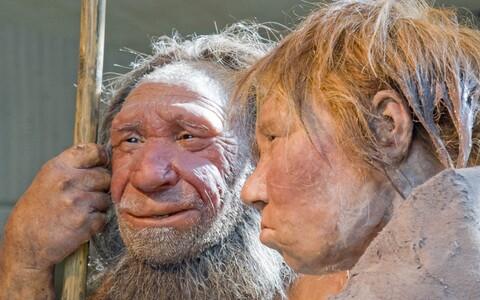 Nüüd eraldas rahvusvaheline teadlasrühm uue tehnika abil neandertallaste DNA-d ka koopapõrandale kogunenud mudast.