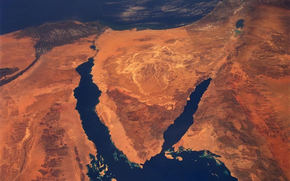 Võõrliigid jõuavad Vahemerre Suessi kanali kaudu.