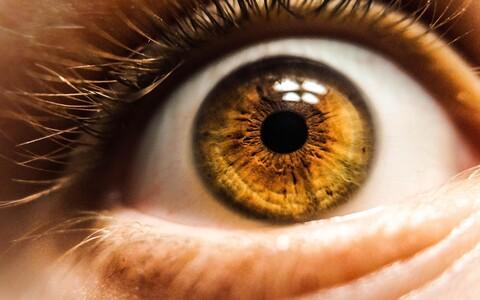 Inimeste silmaava ehk silmatera on tavaliselt musta värvi ja ümmargune.