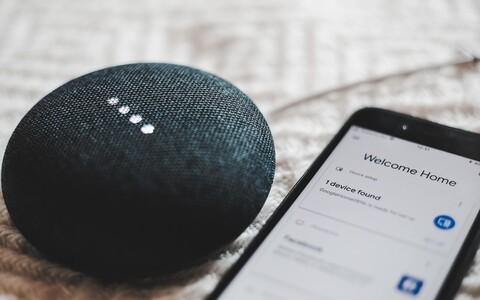 Google Nesti nutikõlarid paisati turule juba 2016. aasta lõpus. Nutikõlaritega ühes on seadmes ka häälassistent, kellelt näiteks paremaid Spotify laulusoovitusi või Netflixi filmisoovitusi küsida. Eestikeelne tugi seadmel praegu puudub.