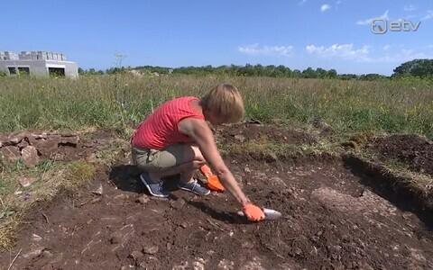 Arheoloog.