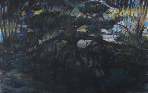 Evald Okase muuseumi uuel näitusel on esindatud ka graafik Peeter Ulase tööd