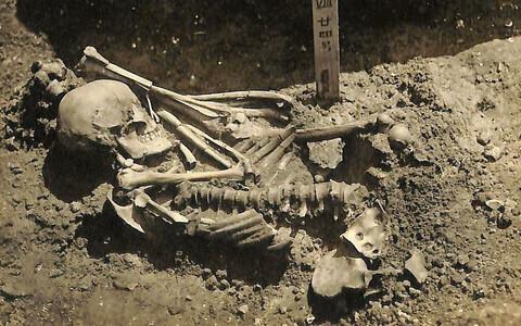 Jaapanlase toes reetis, et vanim teadaolev hairünnak leidis aset ligikaudu 3000 aastat tagasi.