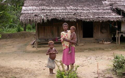 Paapua Uus-Guinea mägedes on inimesed elanud 20 000 aastat.
