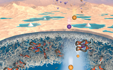 Uus membraan eraldab liitiumi ioonid teistest ioonidest.