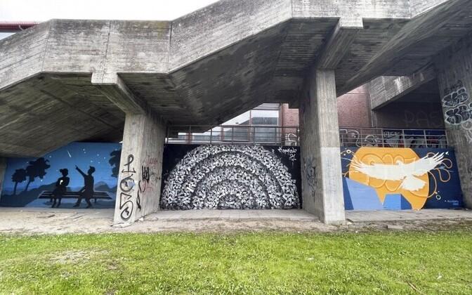 Молодежный арт-надзор в Ласнамяэ.
