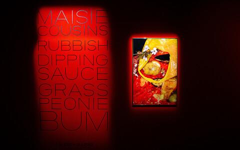 Maisie Cousinsi näitus