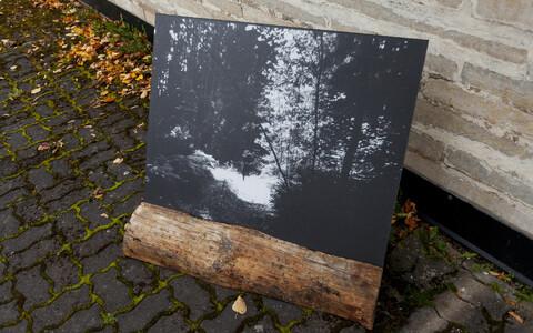 Viktor Gurovi näitus