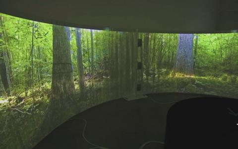 В музее звуки природы слышны в ускоренном темпе.